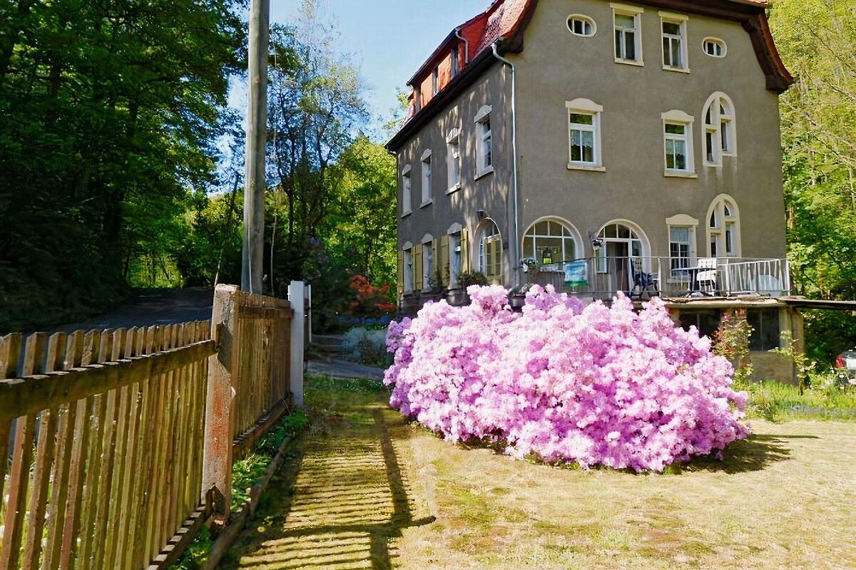 Buy Prostitutes in Doebeln, Saxony