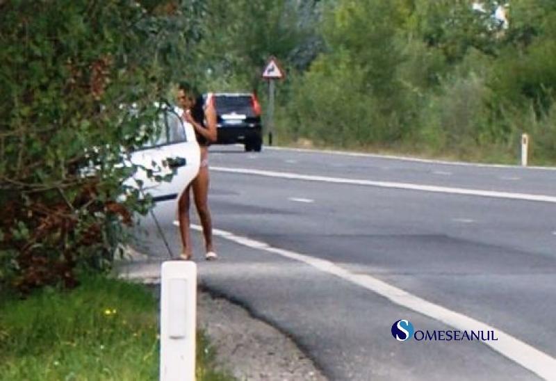 Find Girls in Sighetu Marmatiei,Romania