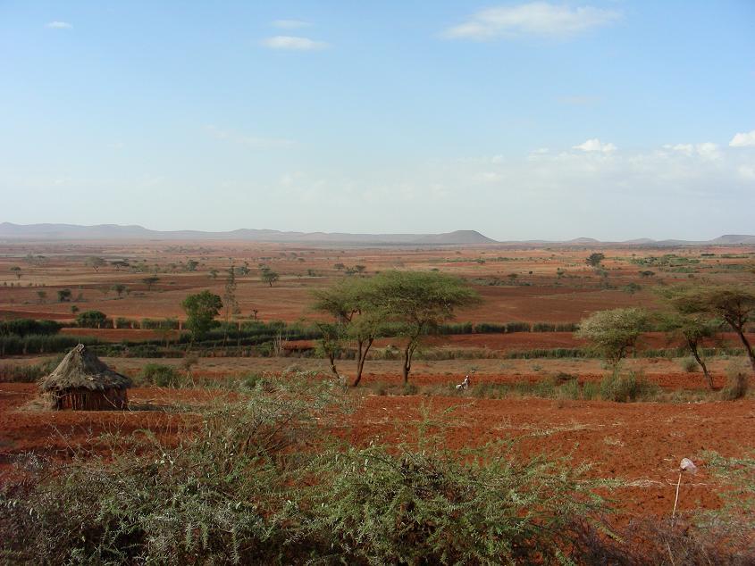 Sluts in Moyale, Kenya