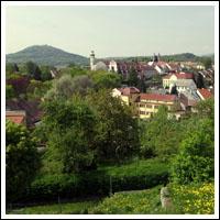 Find Whores in Zatec,Czech Republic