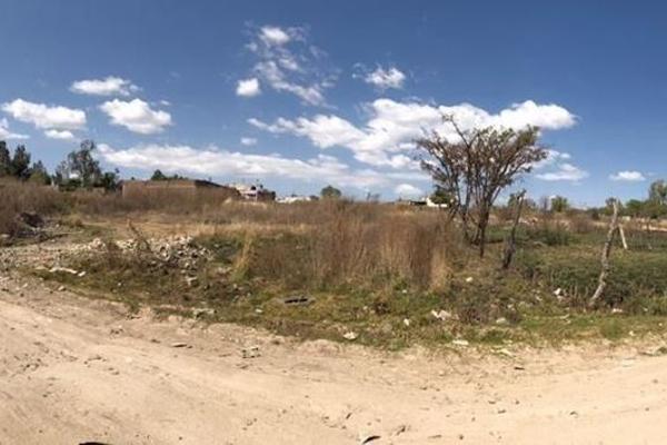 Escort in Centro Familiar la Soledad (MX)