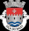 Escort in Leca do Bailio (PT)