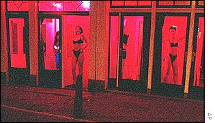 Prostitutes in Rotterdam, New York